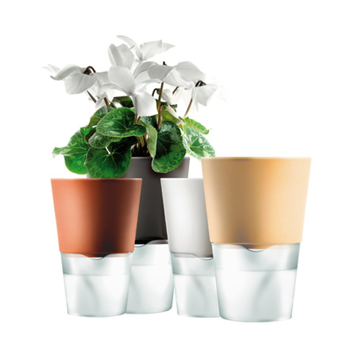 self watering pots self watering herb pot 30073