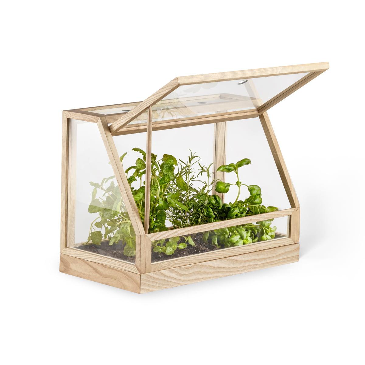 greenhouse mini by design house stockholm. Black Bedroom Furniture Sets. Home Design Ideas