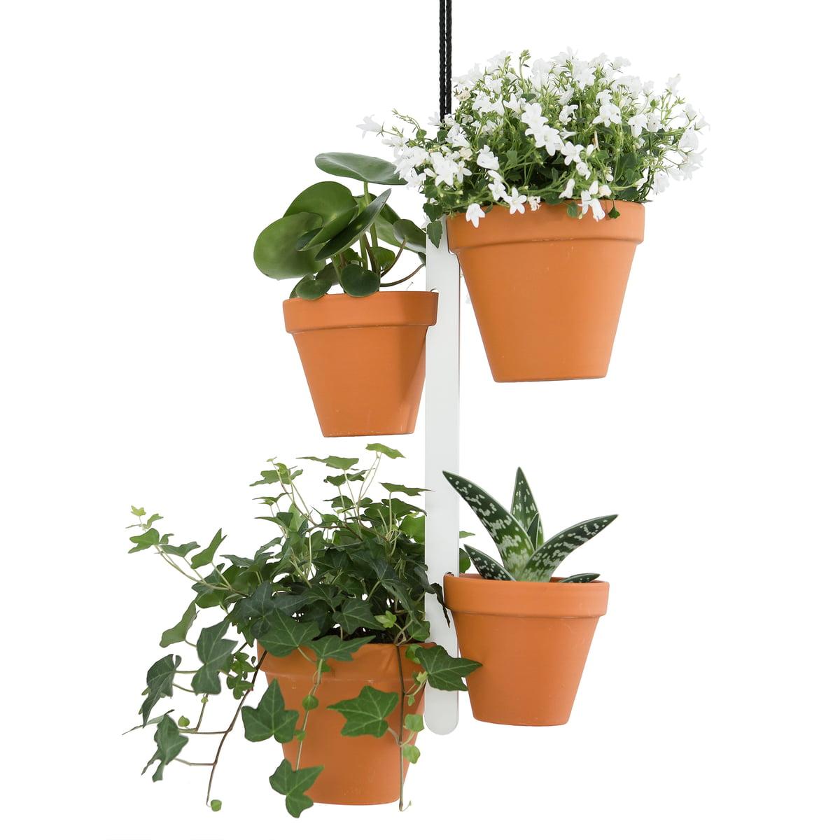 flowerpot hook plant hanger connox. Black Bedroom Furniture Sets. Home Design Ideas