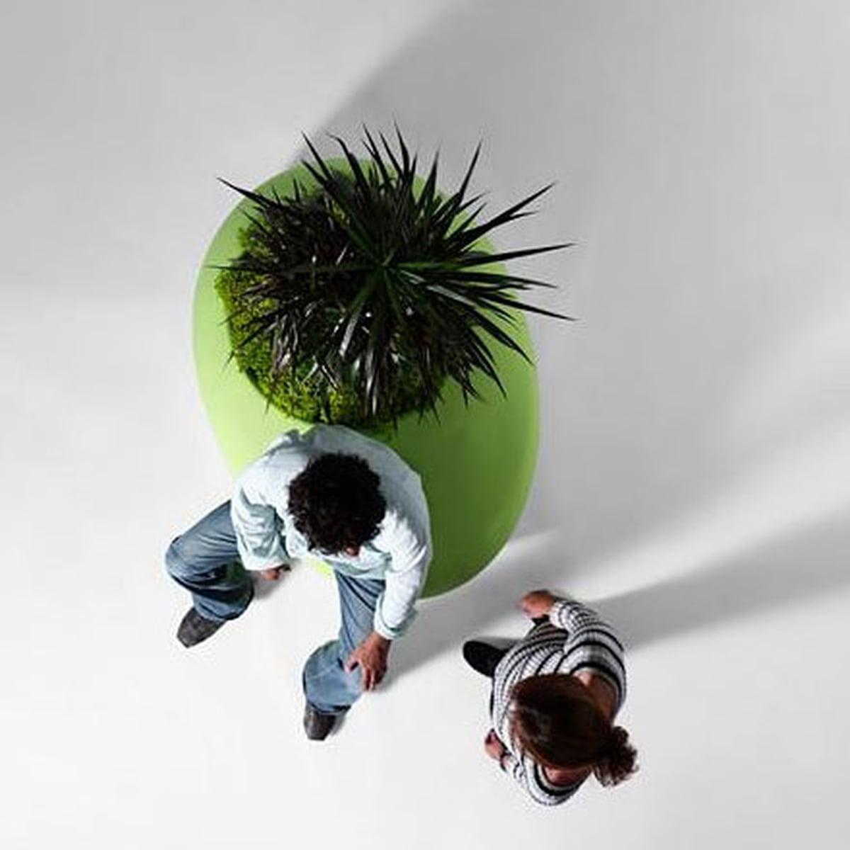BD Barcelona   Bdlove Planter