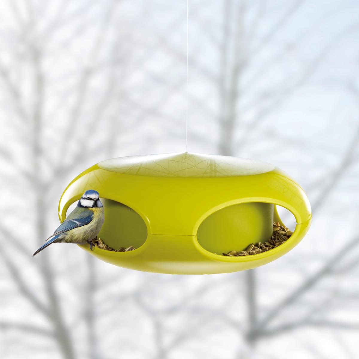 upside tube finch pet down feeder wild yellow bird house perky