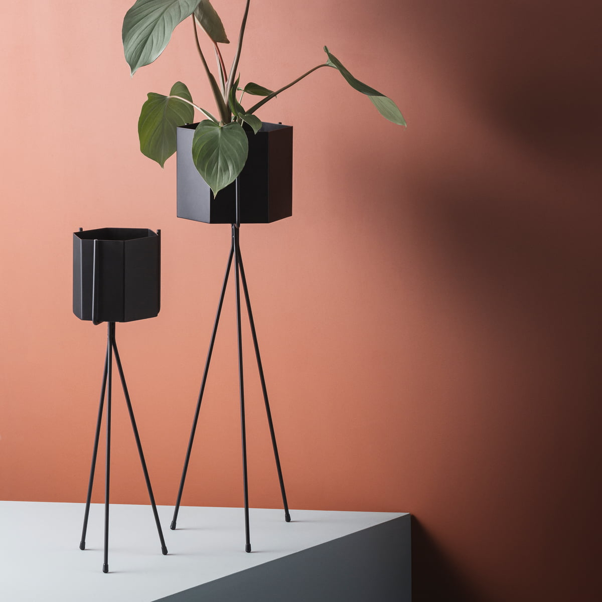 Plant stand by ferm living in the shop for Miroir hexagonal