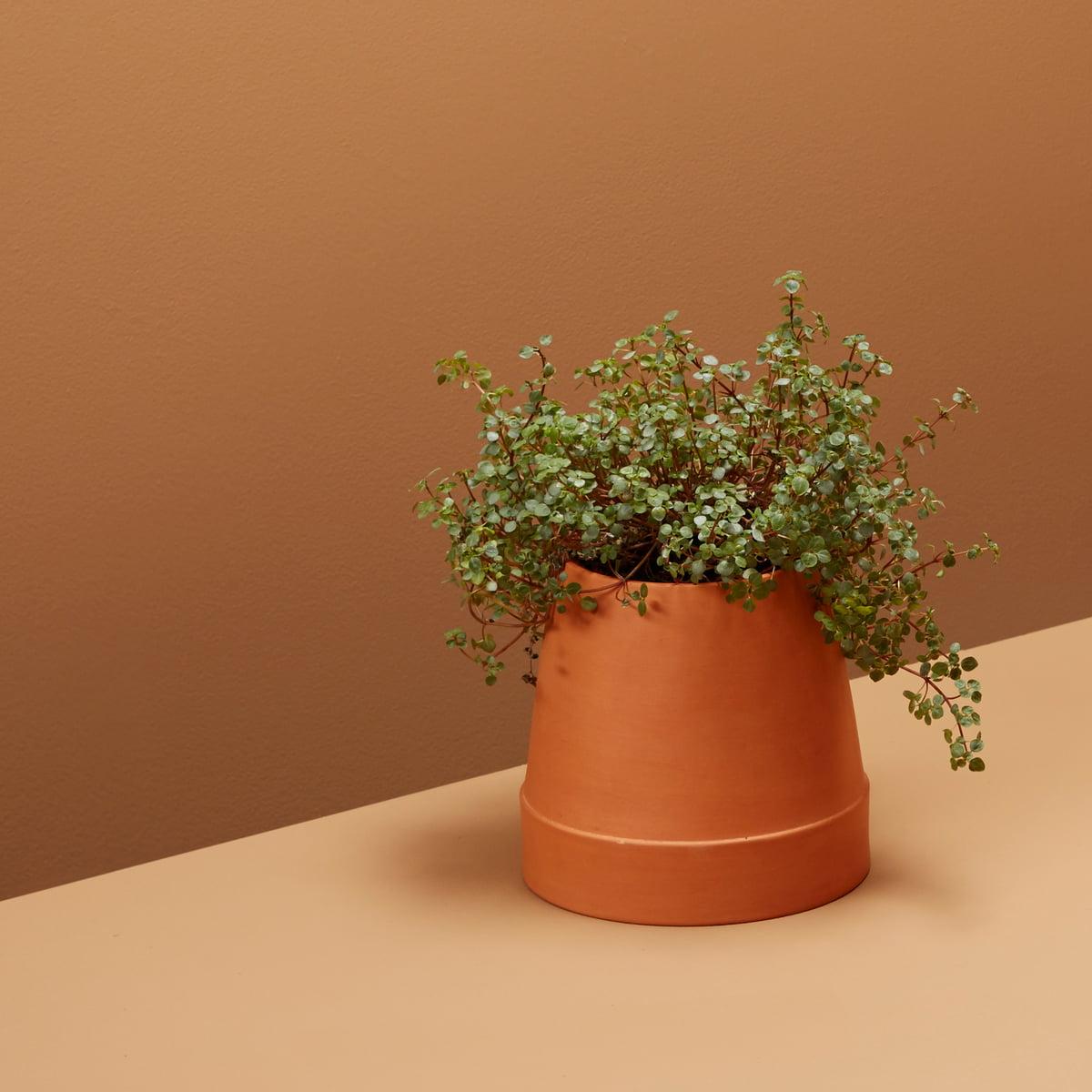 Connox Interior Design Shop & Boskke - Flipped Planter terracotta
