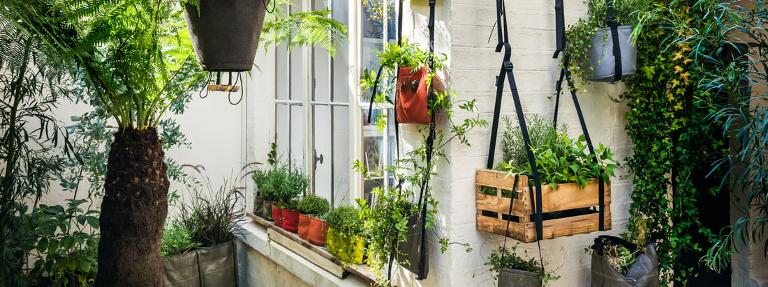 Bacsac, a french design company, produces plant bags like the Baclong Plant Bag. The brown bag is in different lengths eligible - fitting into the plant.