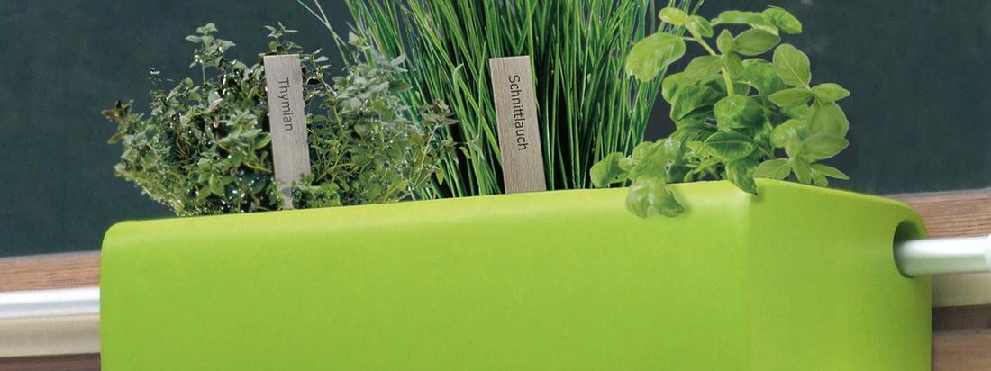 Manufacturer banner - Rephorm - 3840x1440