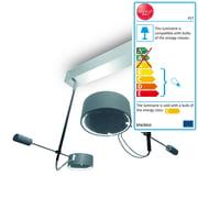 Absolut Lighting - Absolut WCF Ceiling Lamp
