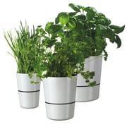 Rosti Mepal - Hydro Herbs Pot