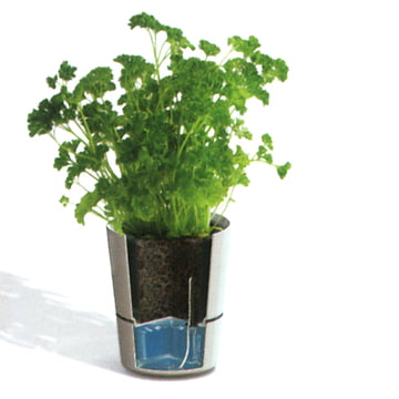 Rosti Mepal - Hydro herb container - function