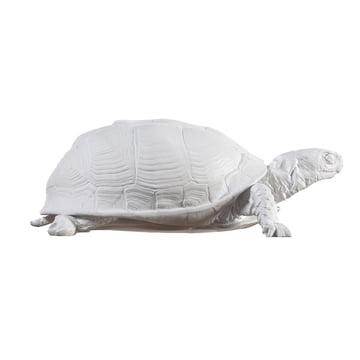 Areaware - Turtle Box, white