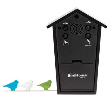 KooKoo - Bird House Mini black, back side and coloured birds