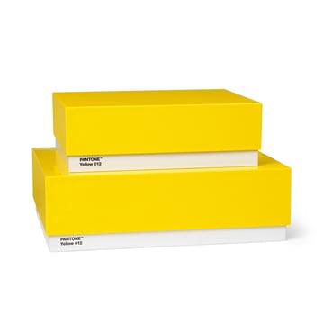 Storage Box Set of 2 by Pantone Universe in Yellow (12)