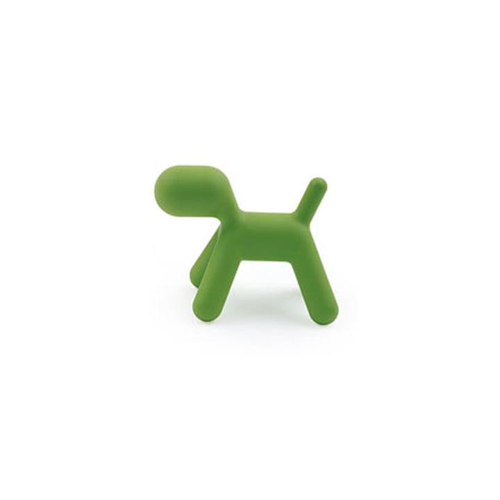 Puppy S, green