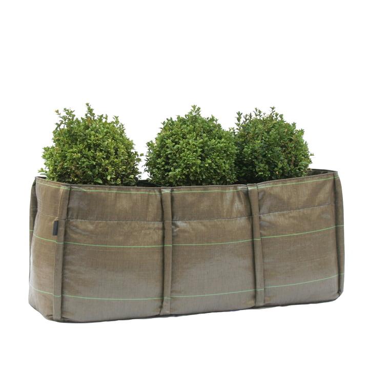 Bacsac Baclong 3 plant bag - 110 litres