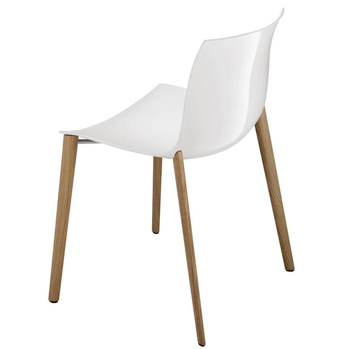 Arper - Catifa 53 chair, wooden four-legged frame, polypropylene, white