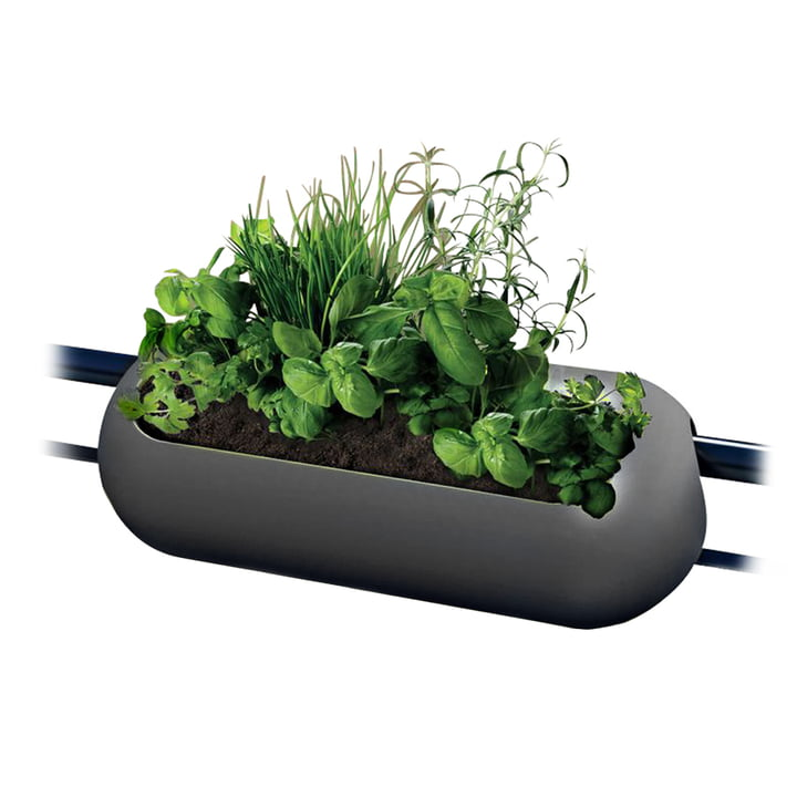 rephorm - balconismo window box, anthracite