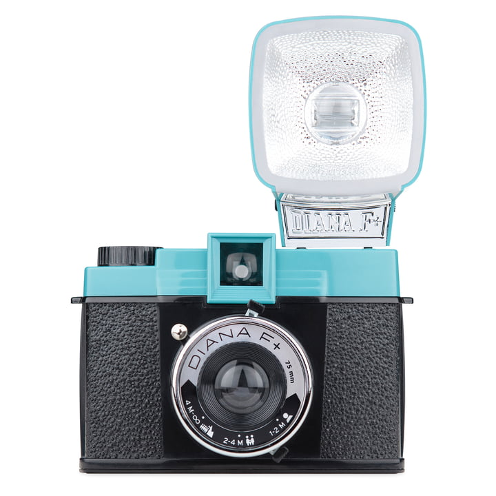 Lomography - Diana F+, with flash