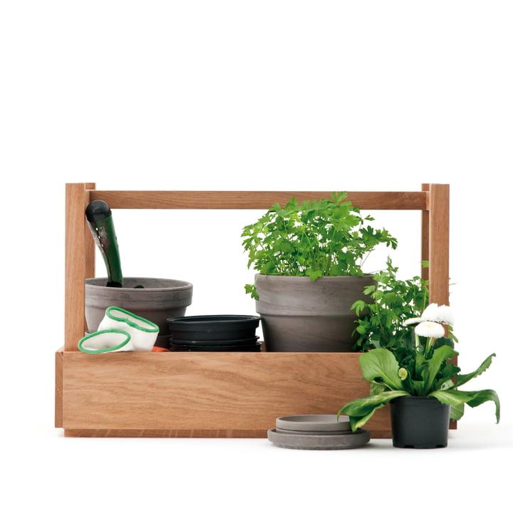 Design im Dorf - Bench and more, oak - plants