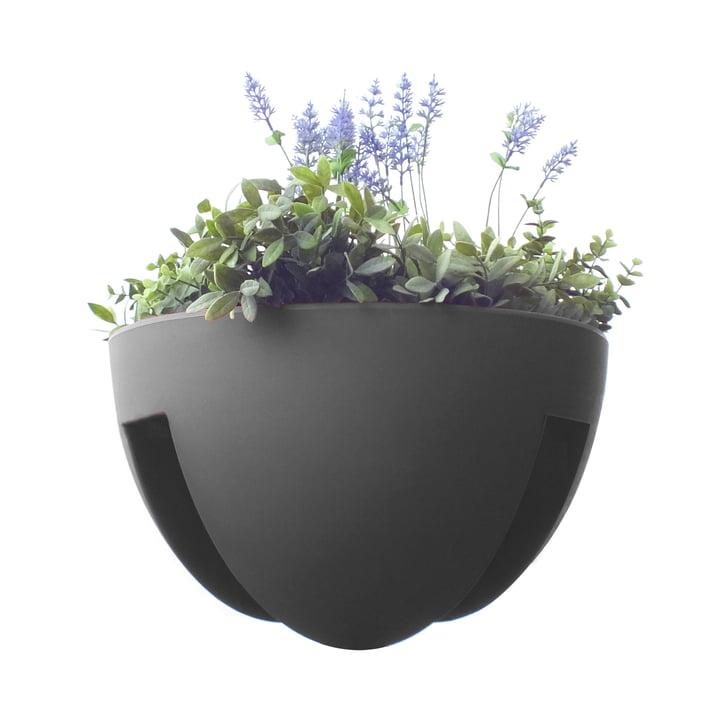 rephorm - Eckling Planter, graphite
