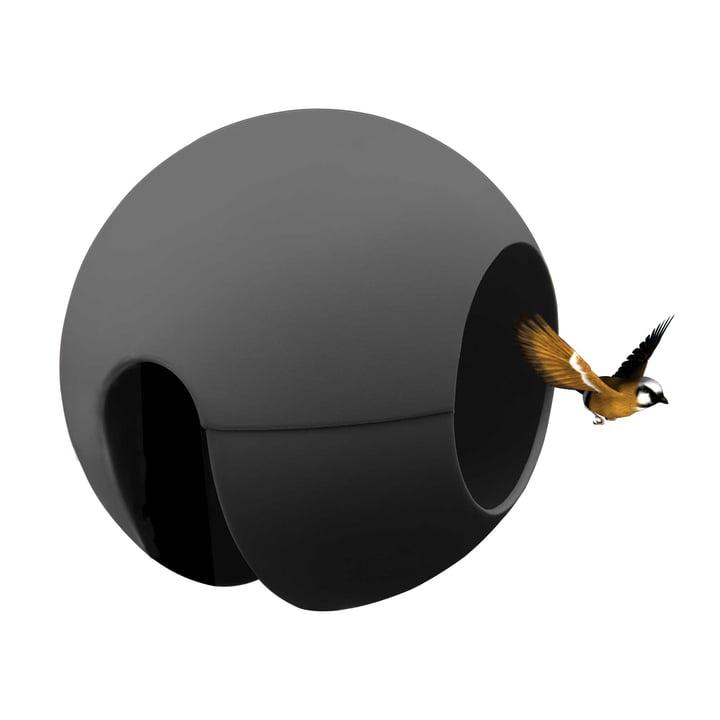 The rephorm - ballcony birdball Feeding station in graphite