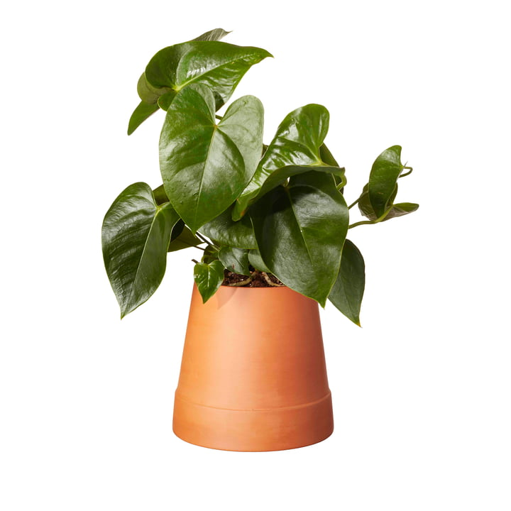 Boskke - Flipped Planter, terracotta