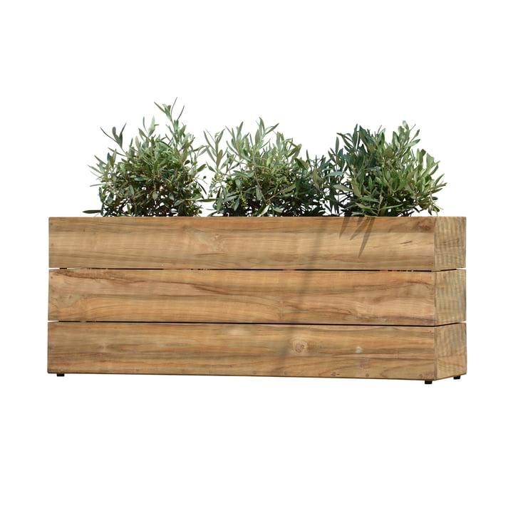 Flowerpot Minigarden in natural teak wood without frame from Jan Kurtz in large