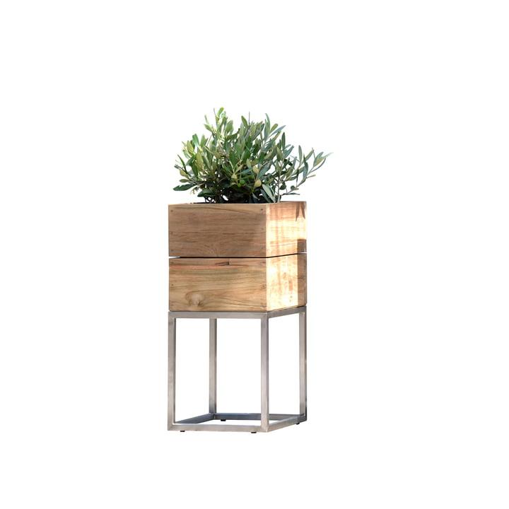 Teak flowerpot Minigarden with frame from Jan Kurtz in Klein
