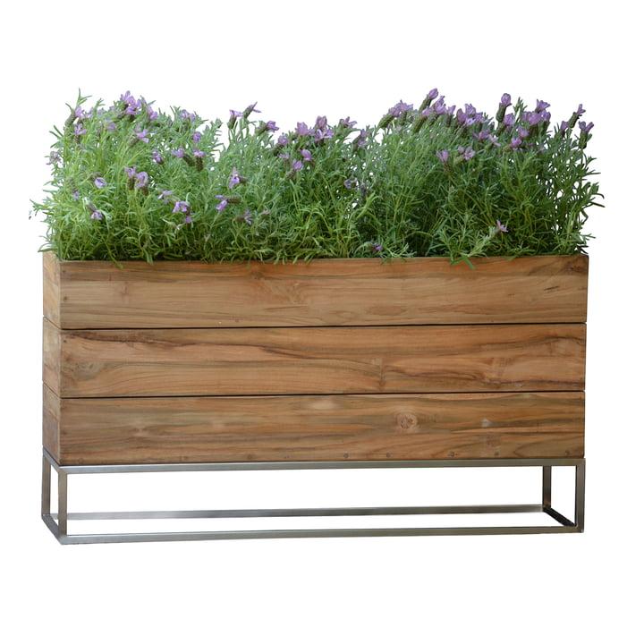 Teak flowerpot Minigarden with frame from Jan Kurtz in Groß