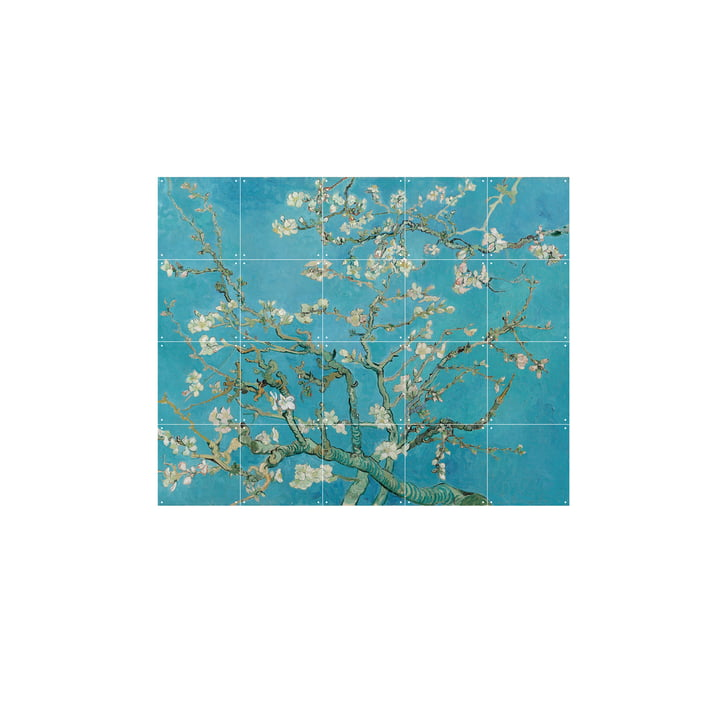 Almond Blossom (Vincent van Gogh) 100 x 80 cm by IXXI