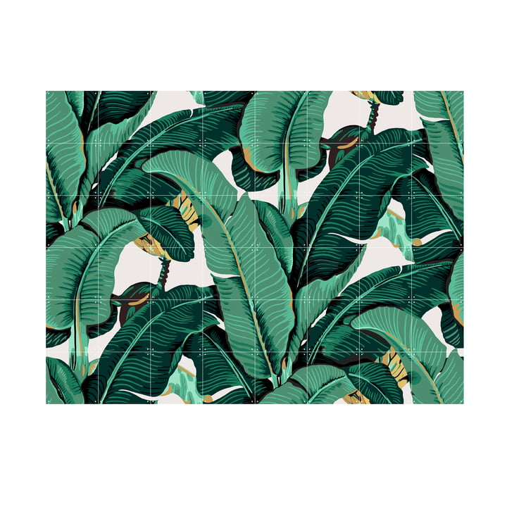 Banana leaf by IXXI 160 x 120 cm