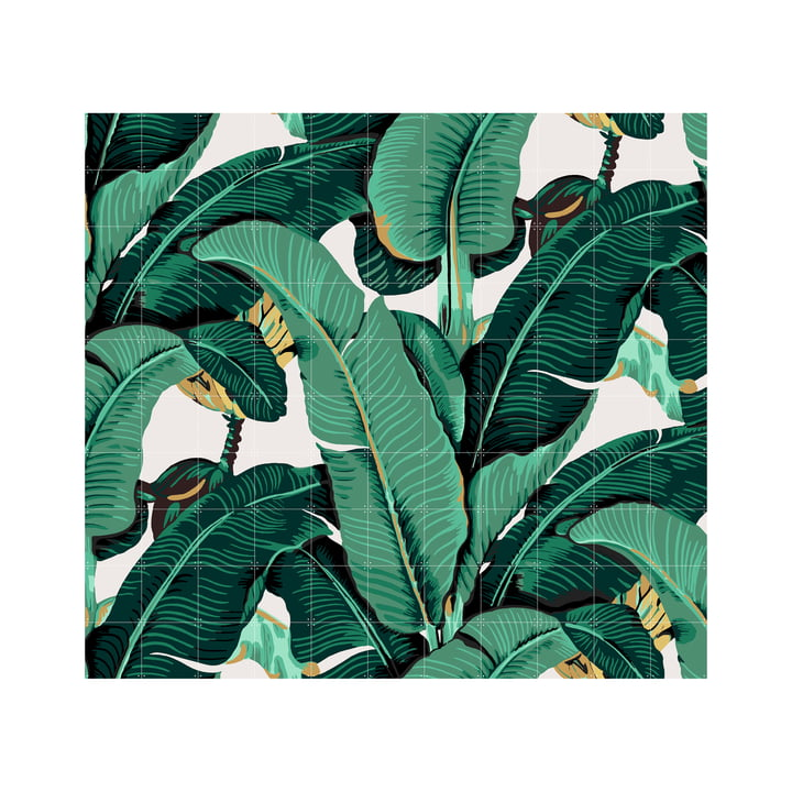 Banana leaf by IXXI 220 x 200 cm