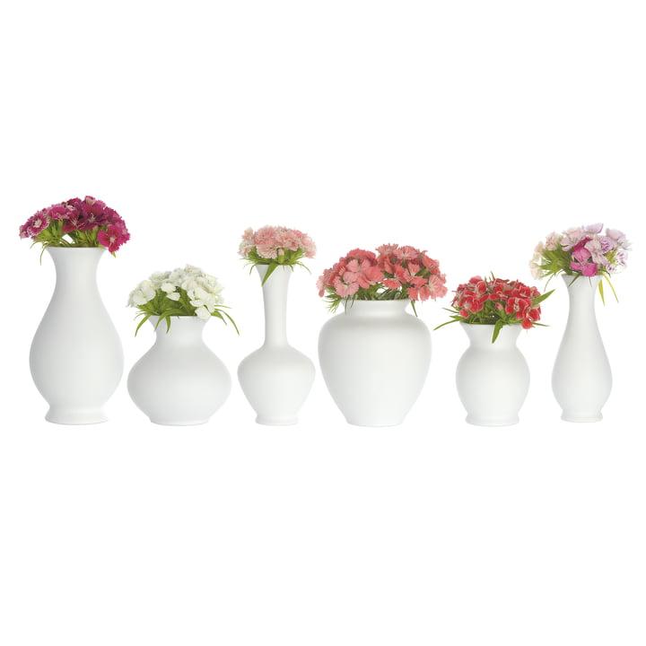 Blossom Vase Set by Schönbuch
