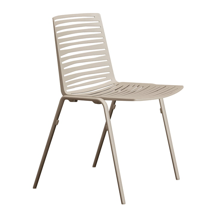 Zebra Chair by Fast in Cream White