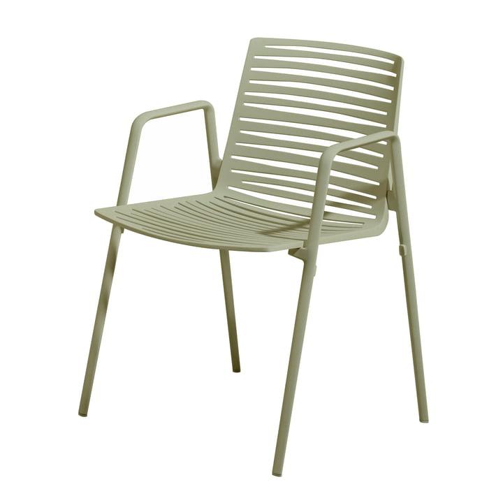 Zebra Armchair by Fast in Tea Green