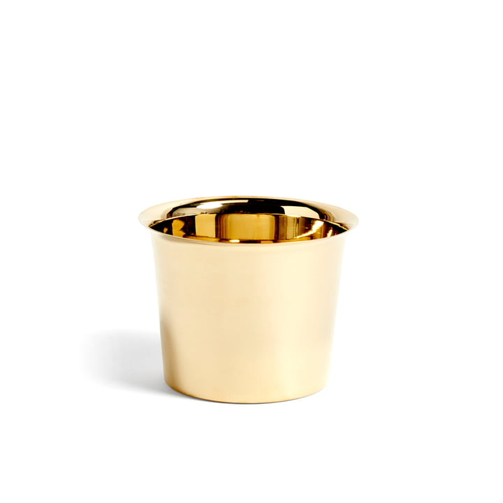 Botanical Family Cachepot M from Hay in brass