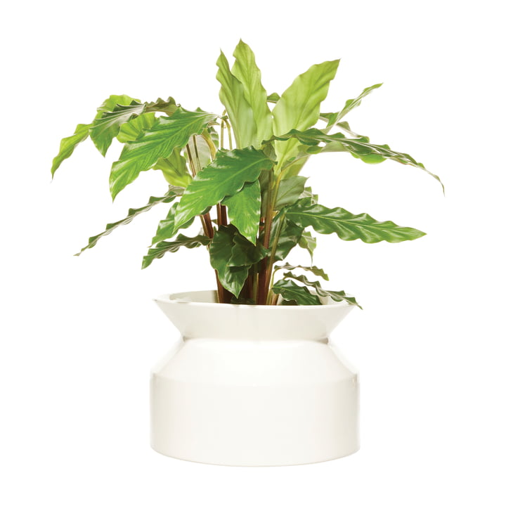 Spool plant pot Medium from Boskke in white