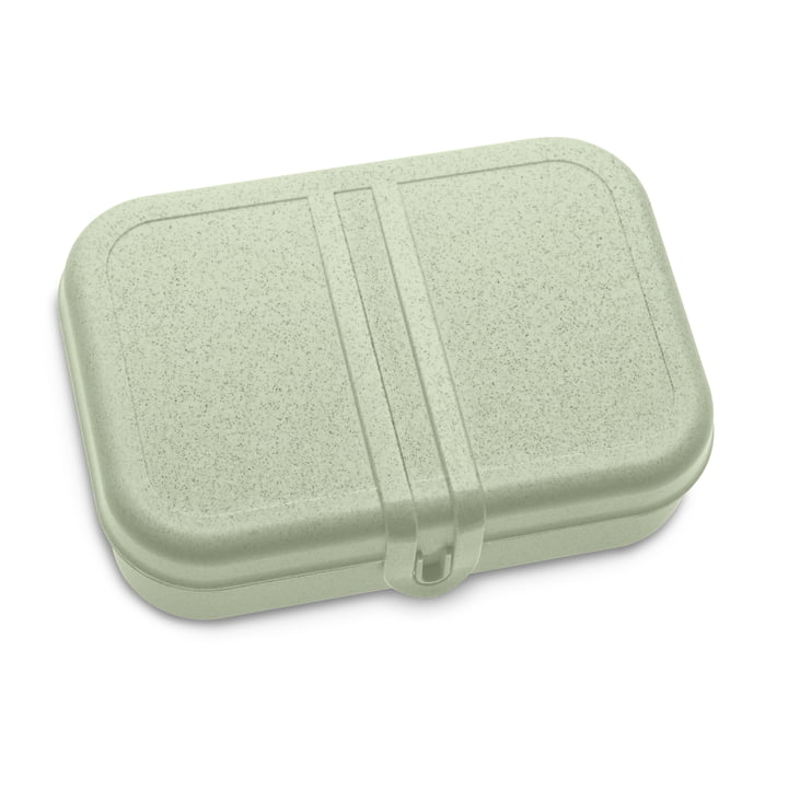 Pascal Lunchbox with organic green divider from Koziol