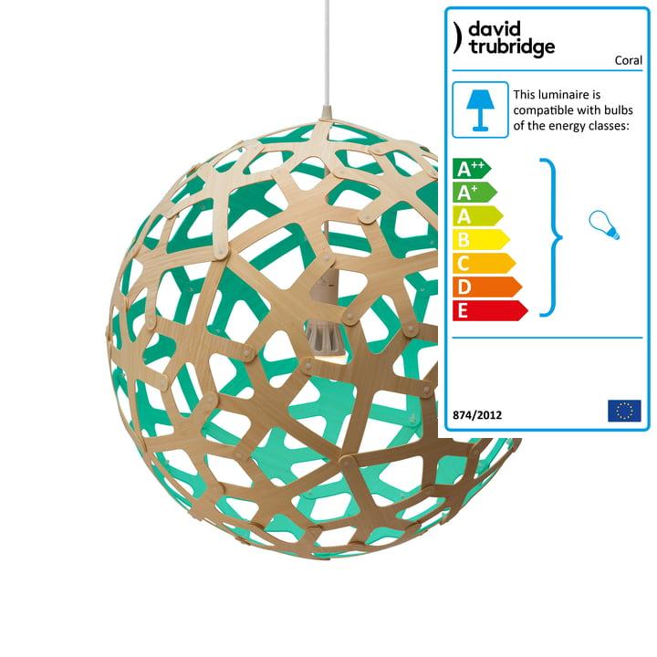 Coral pendant lamp Ø 60 cm by David Trubridge in natural/ aquagreen