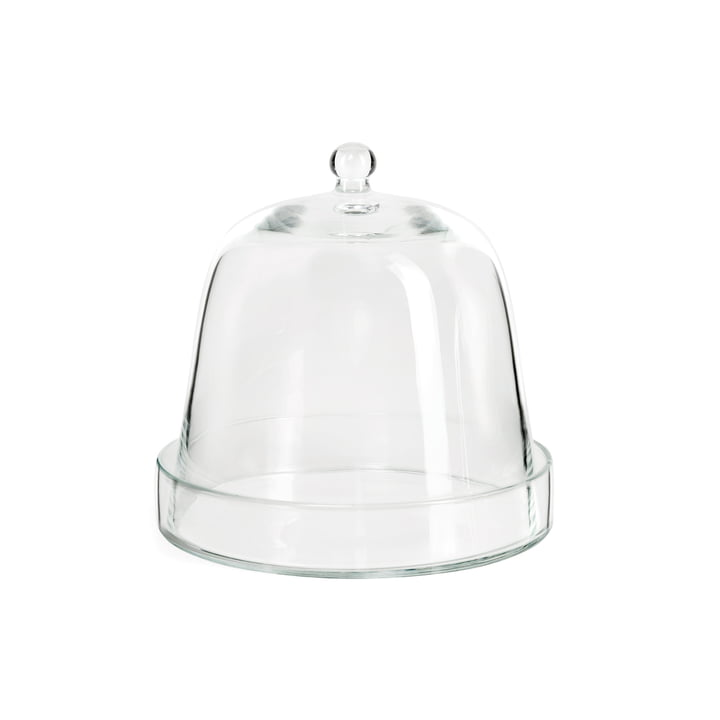 Glass bell with glass saucer of room design