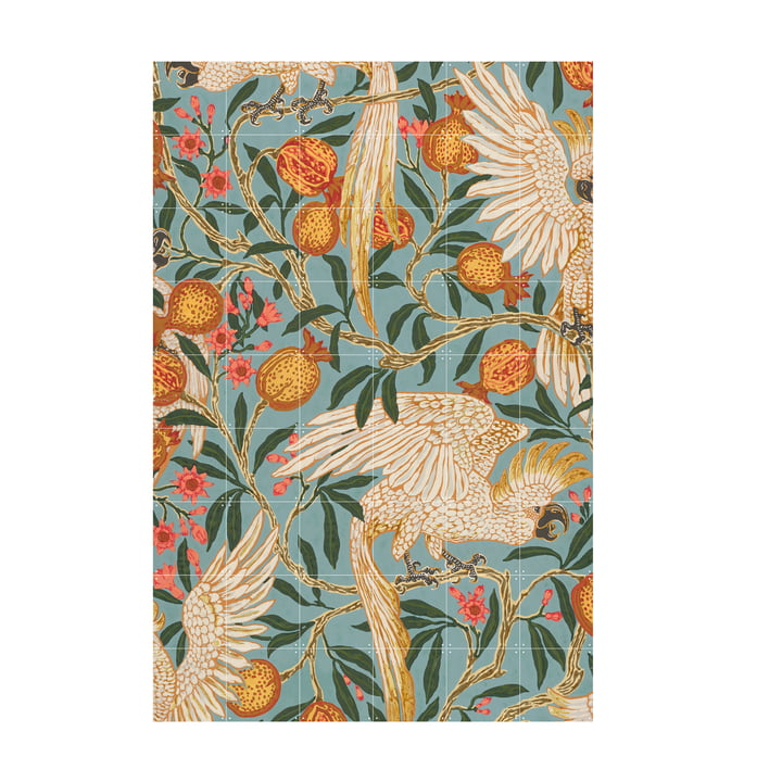 Cockatoo and pomegranate wallpaper (Crane) 120 x 180 cm from IXXI
