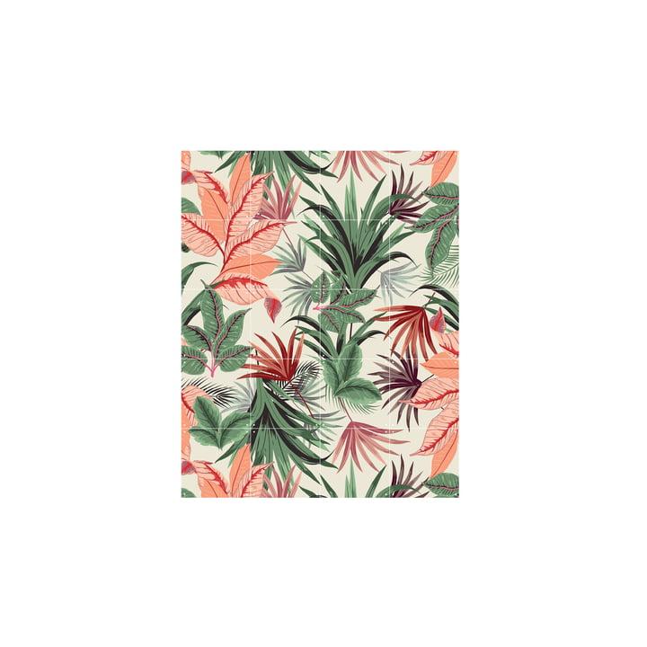 Pink Jungle 80 x 100 cm from IXXI