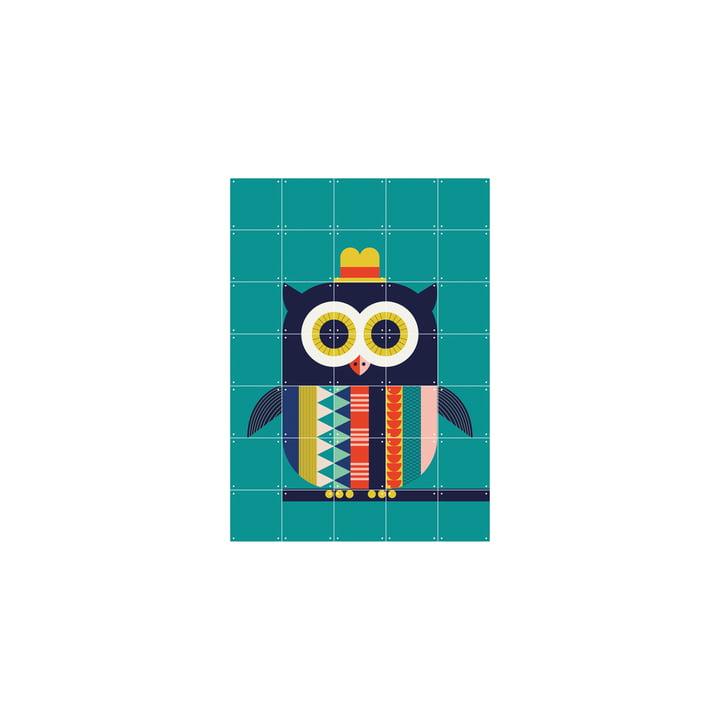 Ingela P. Arrhenius owl 70 x 98 cm from IXXI