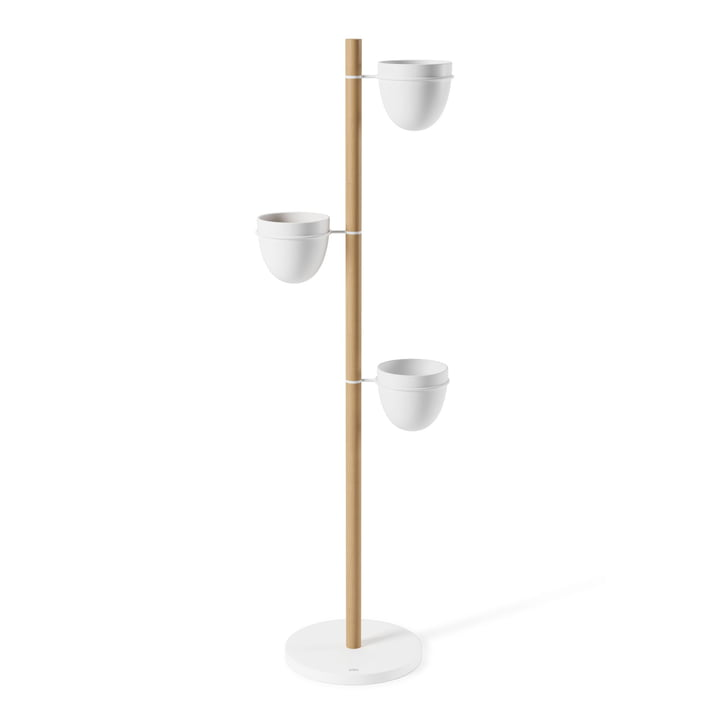 Floristand Plant holder from Umbra in white / natural beech