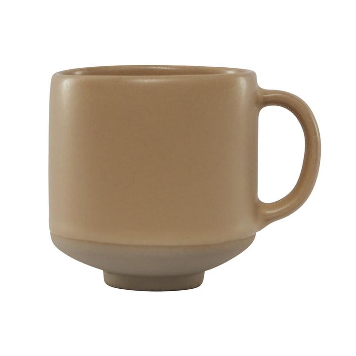 Hagi cup, sahara of OYOY
