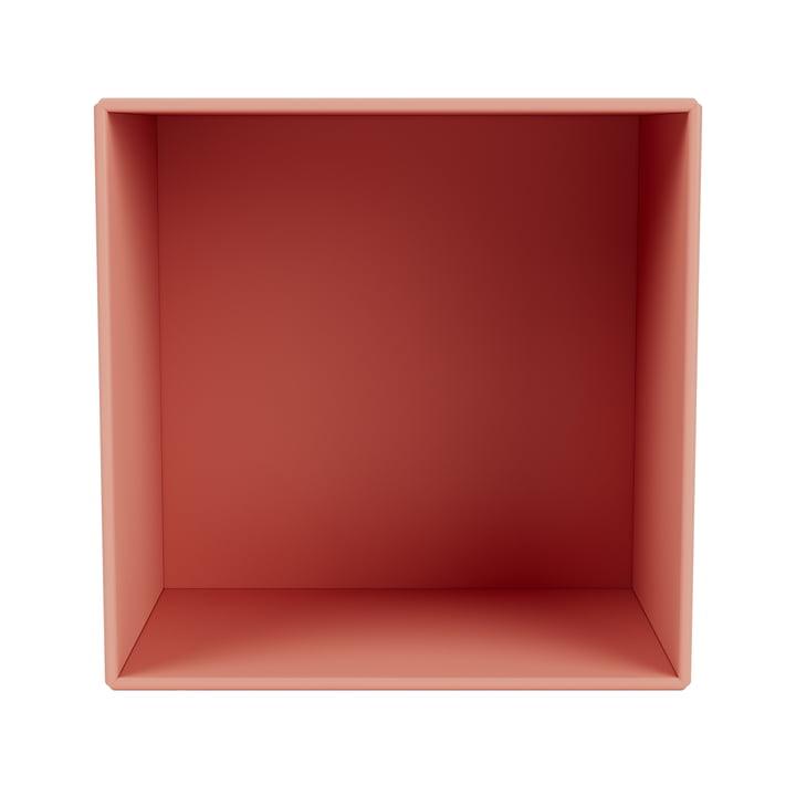 Mini shelf module open, rhubarb from Montana .