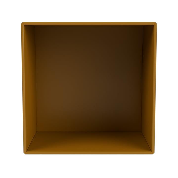 Mini shelf module open, amber from Montana .
