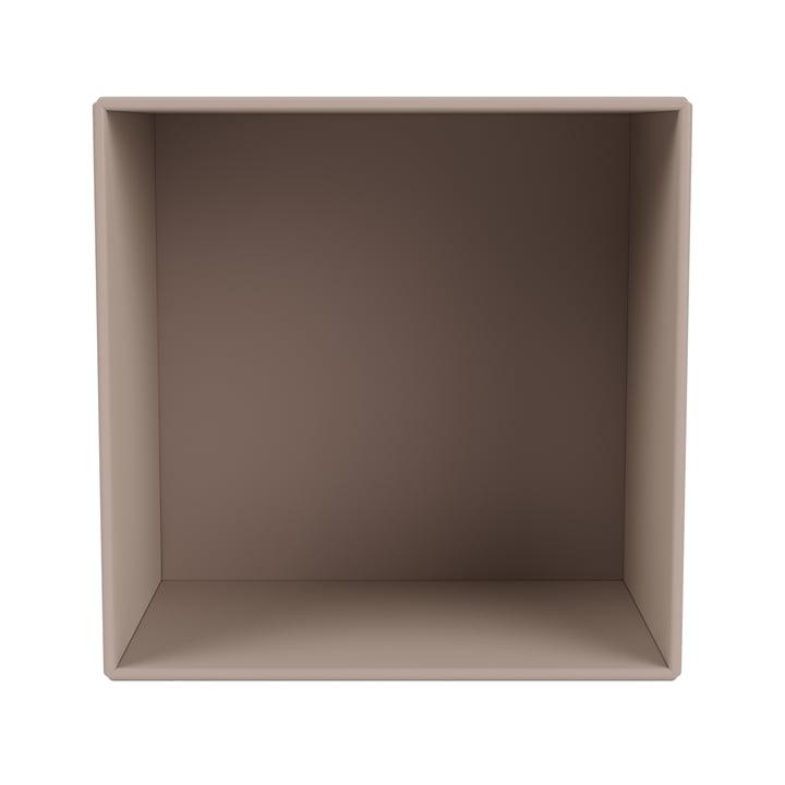 Mini shelf module open, mushroom from Montana .