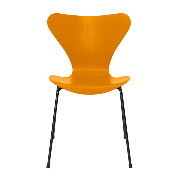 Series 7 chair by Fritz Hansen in burnt yellow colored ash / black frame
