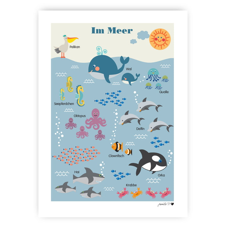The marine animals poster from byGraziela , 50 x 70 cm