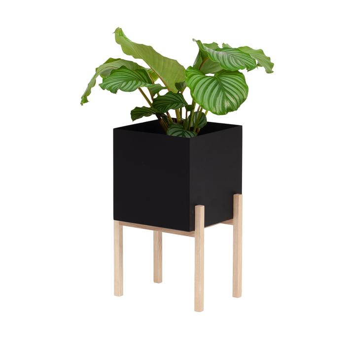 The Botanic Pedestal Pot from Design House Stockholm , black / nature