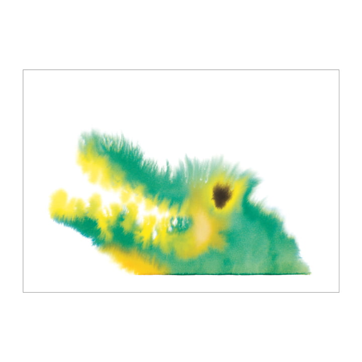 Crocodile poster 50 x 67,8 cm from The Wrong Shop in multicolor